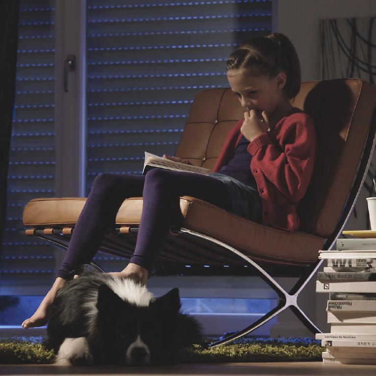 rollladen von roma bieten ihnen viele vorteile. Black Bedroom Furniture Sets. Home Design Ideas